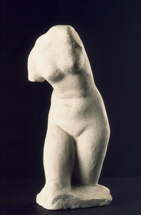 Study of a Venus